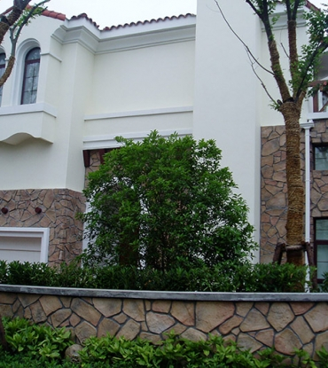 98000乐清上海花园1